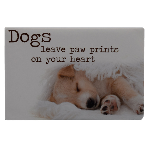 Magnet - Dogs Dogs Dogs f23a5b