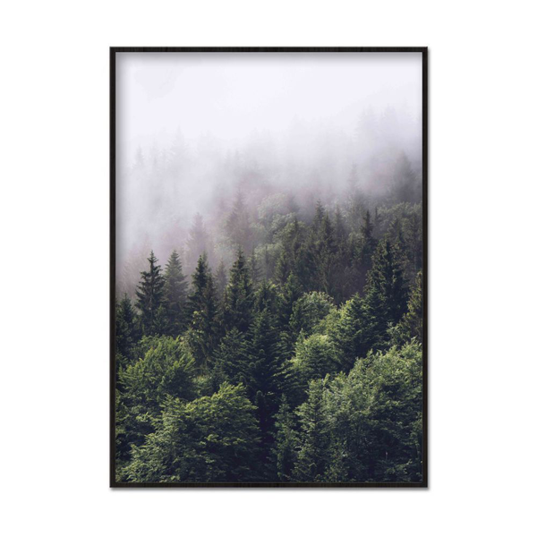 Poster A3 30x42cm Foggy Forest