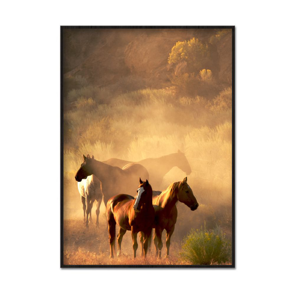 Poster A3 30x42cm Horses Morning