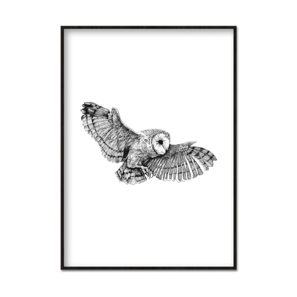 Poster A3 30x42cm Owl