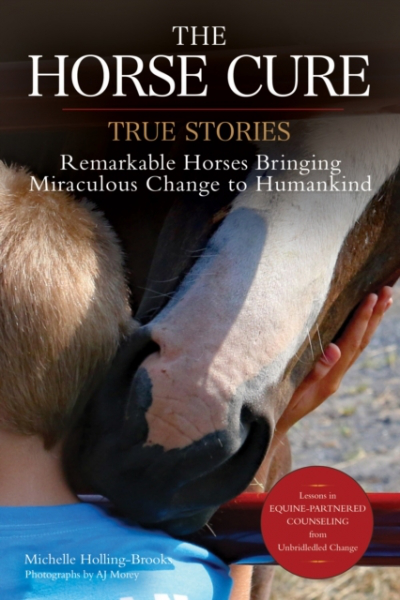 Horse cure by michelle hollingbrooks