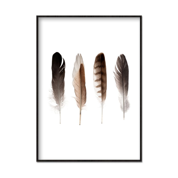 Poster A3 30x42cm Brun Feathers Feathers Feathers 1ee5e7