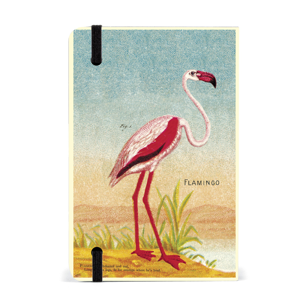 Cavallini Papers & Co. Flamingo Weekly Planner Diary 2019