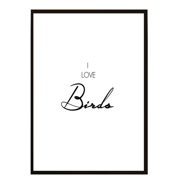 Poster - I love Birds A3 30x40cm