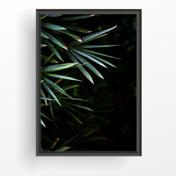 Poster A3 30x42cm Tropical Leaves Leaves Leaves 8663cf