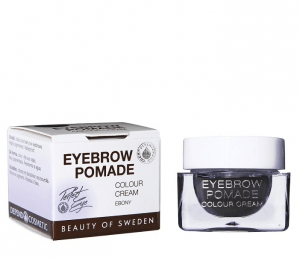 Depend perfect eye eyebrow pomade – ebony