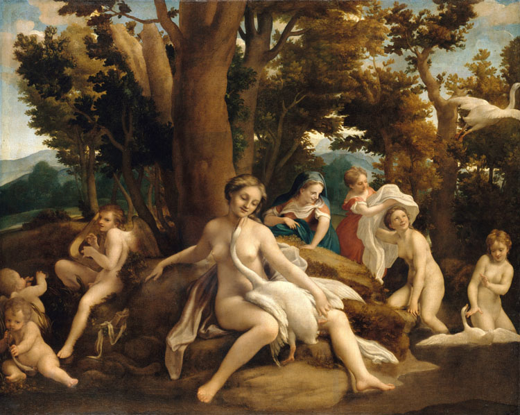 Leda and the Swan,Correggio,50x40cm