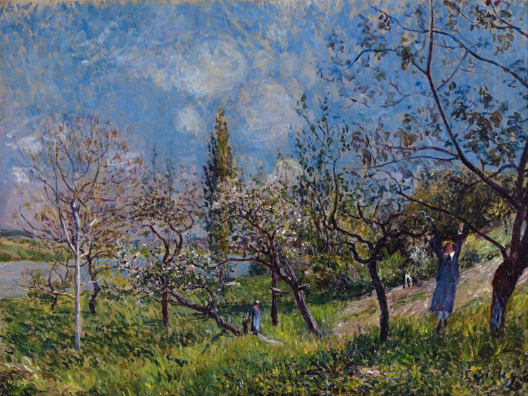 Orchard in Sping-By,Alfröd Sisley,54x72cm