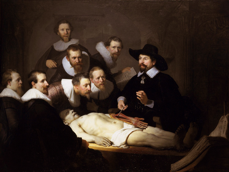 The Anatomy Lesson of Dr.Nicolaes,Rembrandt van rijn,50x40cm