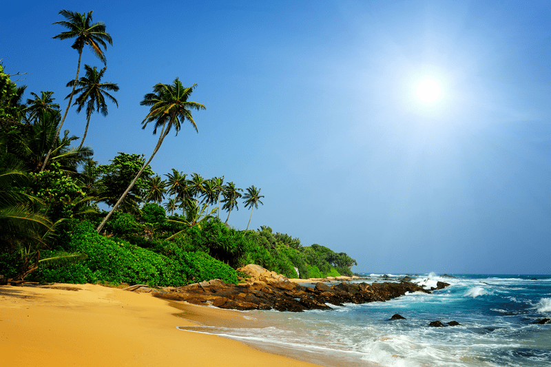 sri lanka tropical beach