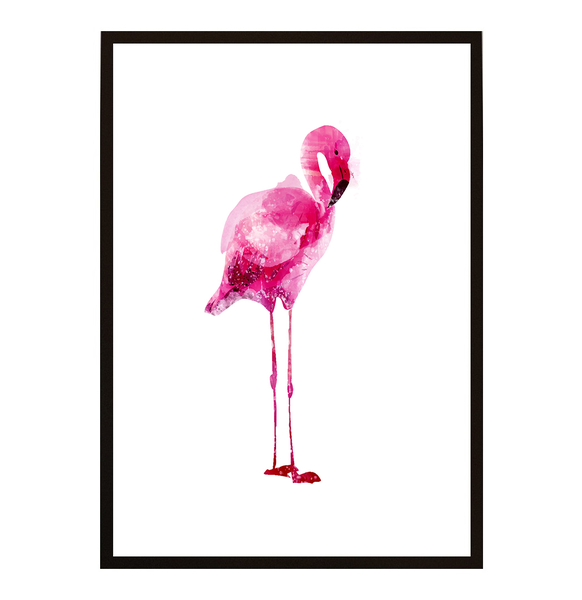 Poster - Flamingo Power 40x50cm