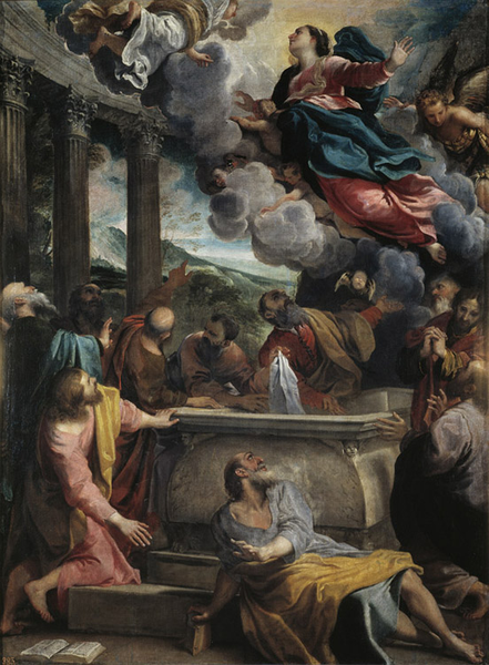 The Assumption of the Virgin,Annibale Carracci,50x40cm